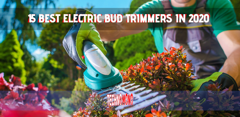 15 BEST ELECTRIC BUD TRIMMER 2020