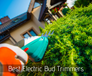 BEST ELECTRIC BUD TRIMMER